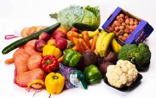 vegetable product studio shoot in Pretoria